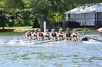 Race: 12  Event: Championship 8+<br /> Crew: 380  Club: Rhode Island Univ (USA)<br /> <br /> Henley Women's Regatta 2018<br /> Friday<br /> <br /> To purchase this photo, or to see pricing information for Prints and Downloads, click the blue 'Add to Cart' button at the top-right of the page.