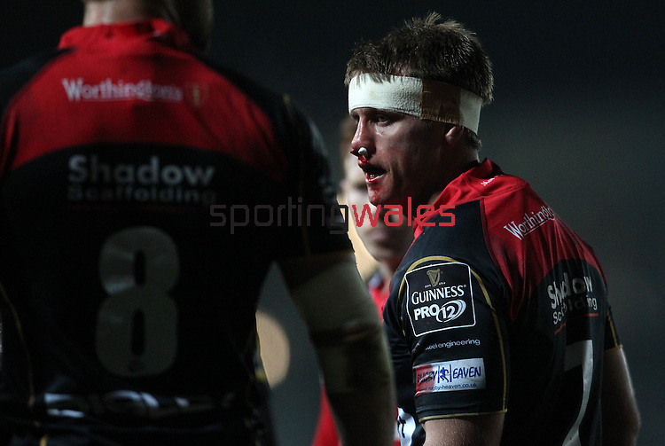 Open-side flanker Nic Cudd of Newport Gwent Dragons returns to play after receiving treatment for a blood injury.<br /> <br /> Guiness Pro 12<br /> Newport Gwent Dragons v Munster Rugby<br /> Rodney Parade<br /> 21.11.14<br /> ©Steve Pope-SPORTINGWALES