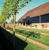 The pleached limes cast a shadow on the terraced lawn