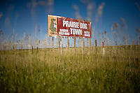 "A sign advertises Prairie Dog Town, a tourist stop off the interstate north of the Haverfield Ranch.  The ""town"" features a colony of docile prairie dogs, other caged animals, and ""the world's largest prairie dog"" --a 20 foot tall cement statue of a prairie dog.  Stuffed animals in the form of the animals are also available for purchase.  The ""town"" sits near the county seat, the hub of activity that is trying to erradicate prairie dogs from the area...Larry and Bette Haverfield on their ranch near the defunct town of Russell Springs, Kansas.  The Haverfields have been embroiled in a long-running war over the presence of prairie dogs on their ranch.  The Haverfields assert, correctly, that the prairie dogs contribute to increased biodiversity on their property, enabling them to graze their cattle in a fashion that mimics the movement and grazing patterns of pre-settlement buffalo through their range.  The county, particularly county commissioner Carl Ulrich, contend that prairie dogs are a nuisance and should be eradicated.  Many of the haverfields' neighbors feel the same way.  In recent years, the county has exterminated prairie dogs from the Haverfield property using a number of methods, including gas and poison, before sending the Haverfields the bill.  The Haverfields have discovered a number of 'secondary kill' animals, carcasses of birds and mammals that have eaten the poisoned prairie dogs and subsequently been killed themselves.  Complicating matters, the US Fish and Wildlife Service has recently re-introduced endangered black footed ferrets onto the land, a natural predator of the prairie dogs.  This move has heightened tensions between neighbors and led to a series of legal maneuvers on both sides to control the spread of the prairie dogs as well as the ferrets."