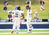 3rd December, Hamilton, New Zealand;  Ross Taylor celebrates his 50 not out during play day 5 of the 2nd test cricket match between New Zealand and England at Seddon Park, Hamilton, New Zealand.