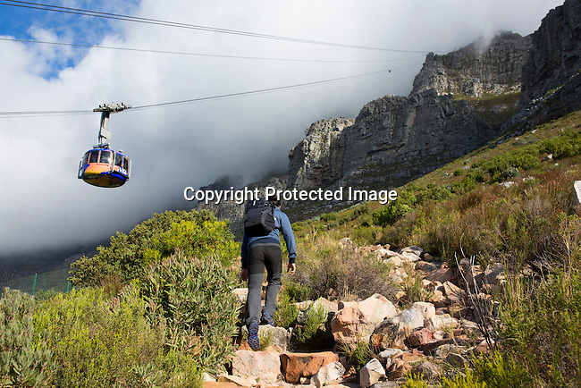 CAPE TOWN, SOUTH AFRICA APRIL 5: A hiker walks on a trail to Table Mountain and the Table Mountain Cable car passes on February 5, 2016 in Cape Town, South Africa. The city offers many different hiking trails close to the city center. (Photo by: Per-Anders Pettersson)