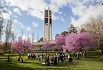 1204-40 2183<br /> <br /> 1204-40 Spring Commencement<br /> <br /> Brigham Young University Graduation<br /> <br /> Students hang out at Carillion Bell Tower<br /> <br /> April 19, 2012<br /> <br /> Photo by Jaren Wilkey/BYU<br /> <br /> &copy; BYU PHOTO 2012<br /> All Rights Reserved<br /> photo@byu.edu  (801)422-7322