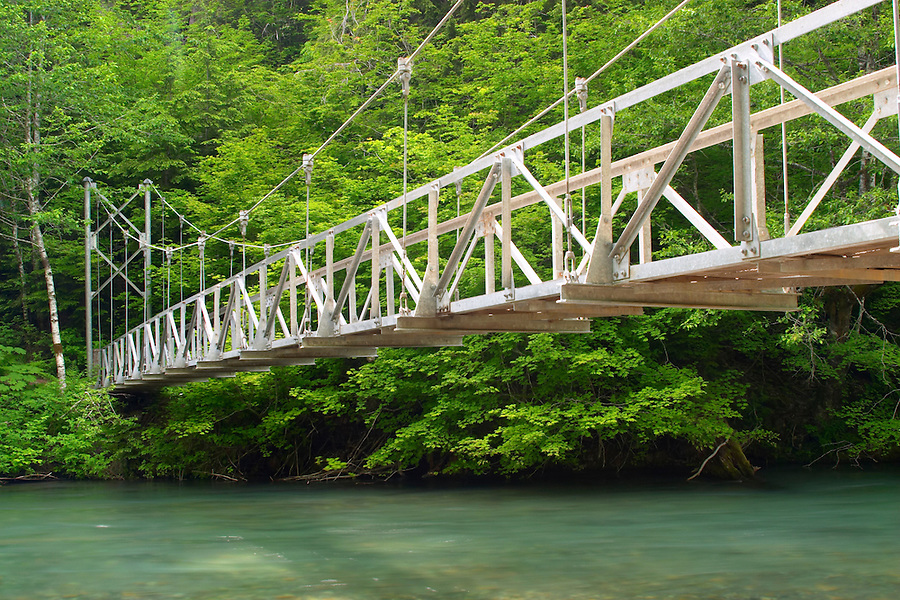 Suspention bridge over Ohanapecosh River on the Grove of the Patriarchs Trail, Mount Rainier National Park, Lewis County, Washington, USA