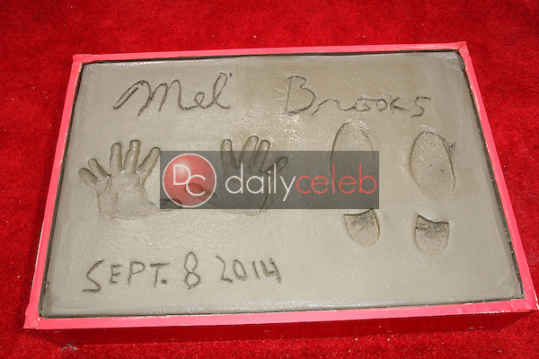 Mel Brooks handprints<br /> Mel Brooks Hand and Footprint Ceremony, TCL Chinese Theater, Hollywood, CA 09-08-14<br /> David Edwards/DailyCeleb.com 818-249-4998