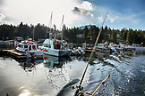 USA, Alaska, Ketchikan, fishing the Behm Canal near Clarence Straight, Knudsen Cove along the Tongass Narrows