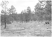 Scattered ties and lumber at Jacques Canyon logging camp site in Carson National Forest, NM.  Sec. 28, T27N, R1E.<br /> Hallack &amp; Howard Lumber Co.  Jacques Canyon, Carson National Forest, NM  Taken by Hereford, Joseph P. Jr. - 1967