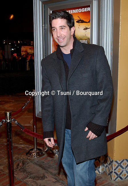 David Schwimmer arriving at the premiere of Collateral Damage at the Man Village Theatre in Westwood Los Angeles. February 4, 2002.           -            SchwimmerDavid01.jpg