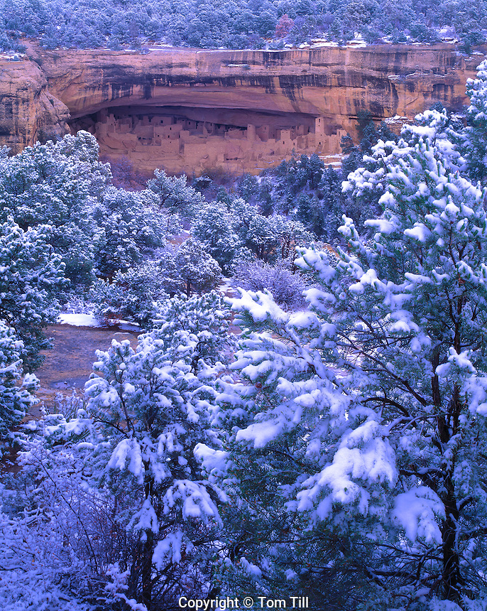 Cliff Palace in Winter Storm, Mesa Verde National Park, Colorado  Largest Ancestral Pubeloan cliff dwelling