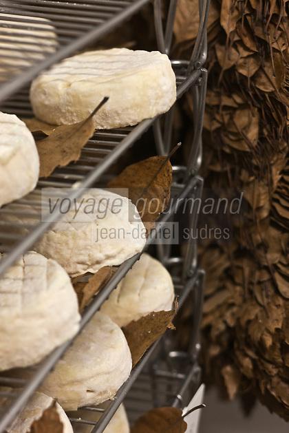 Europe/France/Poitou-Charentes/79/Deux-Sèvres/Villemain: Fromagerie à la ferme de Paul Gorgelet: Le Petit Boisselage - Mothais sur Feuille dans la cave d'affinage