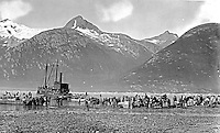 Klondike Gold Rush Historic Photos