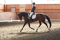 Helen Johansson riding Katrinelunds De Chin in dressage Latt B:2 at Eslovs Ridklubb in southern Sweden. <br />