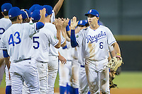 Vance Vizcaino (6) of the Burlington Royals high fives his teammates after their win over the Princeton Rays at Burlington Athletic Stadium on August 12, 2016 in Burlington, North Carolina.  The Royals defeated the Rays 9-5.  (Brian Westerholt/Four Seam Images)