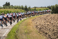 peloton over cobbled section<br /> <br /> Dwars door het Hageland (1.1)<br /> 1 Day Race: Aarschot &gt; Diest (194km)