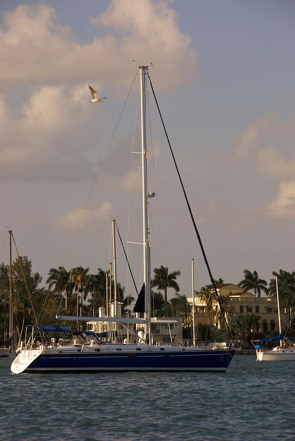 Boat in Biscayne Bay, Miami, FL USA