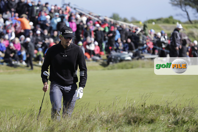 Rafa CABRERA-BELLO (ESP) in the rough for his 3rd shot on the 18th hole during Sunday's Final Round of the 2015 Dubai Duty Free Irish Open, Royal County Down Golf Club, Newcastle Co Down, Northern Ireland 5/31/2015.<br /> Picture Eoin Clarke, www.golffile.ie