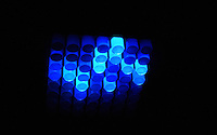 Charlotte Furet, Innovation Design Egineering, 2016.<br /> Living Pixels: A living, digital display made from bioluminescent bacteria.