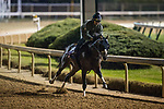 10-28-18 Breeders Cup Preparations