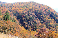 Stock photo - North Carolina hills covered in fall colors as seen from an overlook of Blue Ridge Parkway.