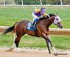 Rippin Hot winning at Delaware Park on 10/3/13