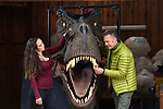 Pictured:  Chris with the T-Rex in his garage with stepdaughter Megan McCubbin.<br /> <br /> Wildlife TV presenter Chris Packham is struggling to find a new home - because he needs one big enough to fit his life size T-Rex head.   The Springwatch presenter said he had forgotten just how big the dinosaur was when he accepted the unusual 100kg item as a present.<br /> <br /> As a result, the 2 and a half metre tall replica is too big to fit into his country cottage in Hampshire's New Forest.  The naturalist - who earlier this year presented a BBC show about the dinosaur - is now looking for a new house with a wall big enough to mount the head on.   SEE OUR COPY FOR DETAILS.<br /> <br /> © Simon Czapp/Solent News & Photo Agency<br /> UK +44 (0) 2380 458800