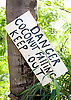 A sign warns of falling coconuts on the island of Kauai, Hawaii. Photo by Kevin J. Miyazaki/Redux