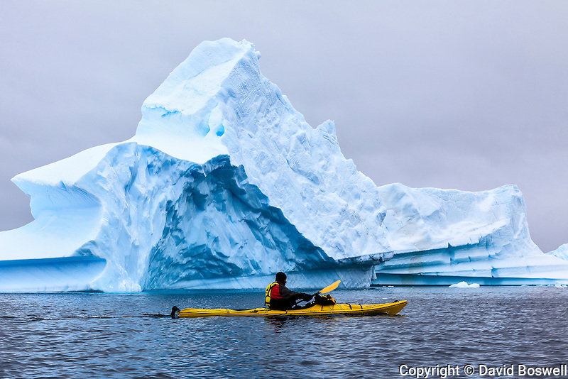Sea kayaking among the blue ice near Pleneau Island along the Antarctic Peninsula.