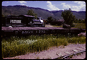 Two trunks on flat car #6732 displayed at Colorado Railroad Museum with RGS #20 in background.<br /> D&amp;RGW  Golden, CO  ca. 1970