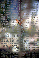 A moth clings to Holocaust victims identification numbers etched in the glass of the Jewish Holocaust Memorial in Boston, MA