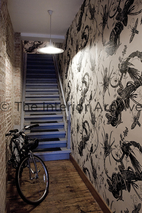 The walls of the narrow 20th century entrance hall and staircase have been covered with a lively wallpaper featuring birds, lizards and insects