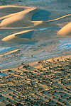 Aerial of sand dunes and date palms in the Sahara, northern Chad.