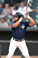Third baseman Jose Brizuela (20) of the Columbia Fireflies at bat in a game against the Charleston RiverDogs on Monday, August 27, 2018, at Spirit Communications Park in Columbia, South Carolina. Charleston won, 4-0. (Tom Priddy/Four Seam Images)
