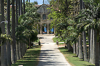 A long drive flanked by tall palm trees leads down to Codrington College. Founded by Christopher Codrington in 1743, this was the first degree-level institution established in the English speaking West Indies and even today, it is in use as a theology college which forms part of the University of the West Indies.