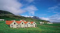 Farming community at Bogarfoss in the fjordland region of south-east Iceland