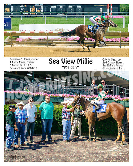Sea View Millie winning at Delaware Park on 6/20/16