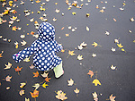 Toddler on wet fall afternoon reaching for leaf..