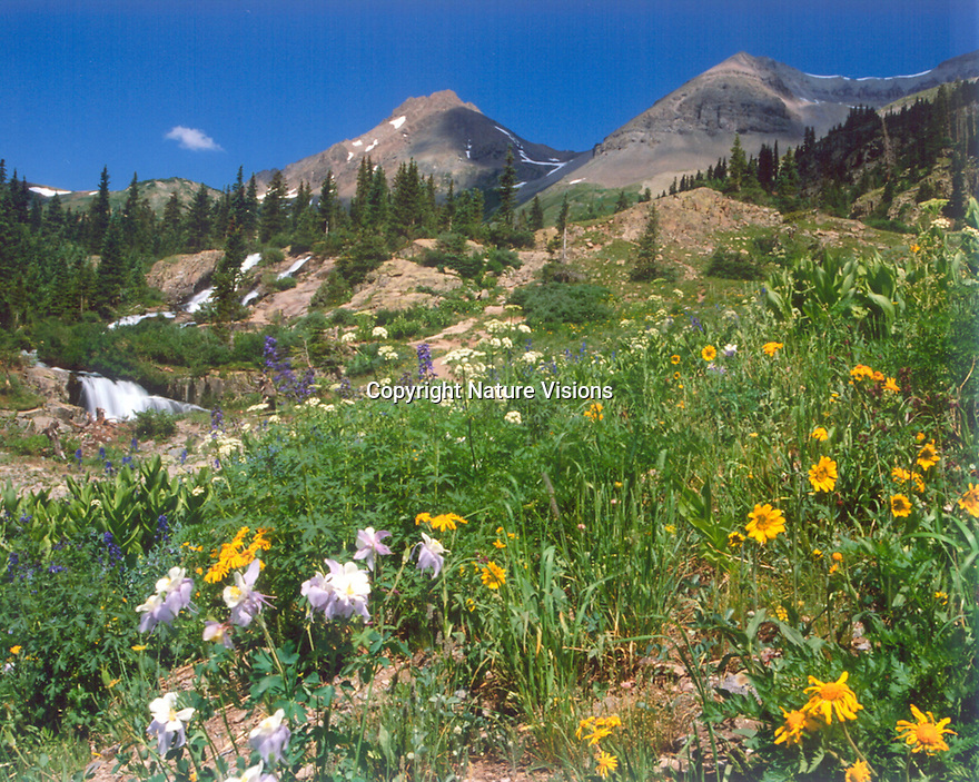 YANKEE BOY BASIN<br /> NEAR OURAY, COLORADO