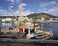 Fishing-boats in the harbour with the town behind, Husavik, n.e. Iceland