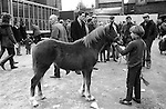 Southall West London weekly Wednesday Charter Fair Horse market Uk 1983