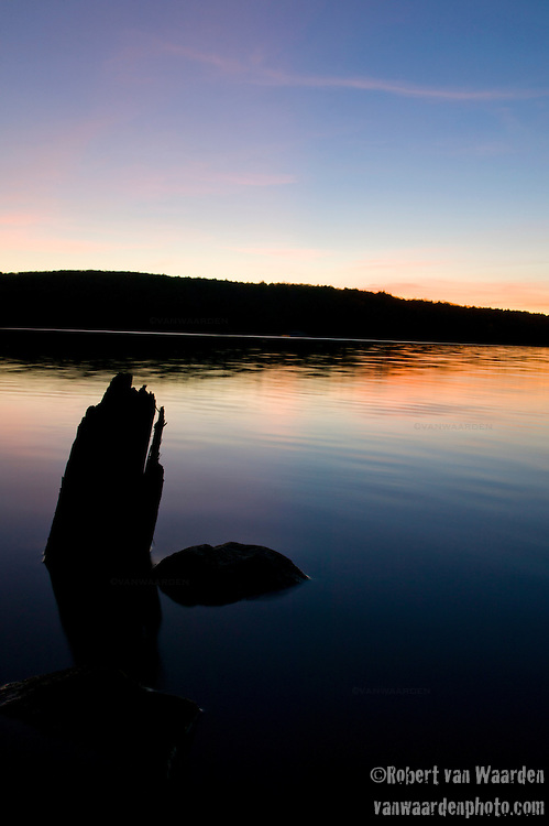 Sihouetted tree stumpsas dusk settles on Galerairy Lake in Ontario's Algonquin Provincial Park in Canada.