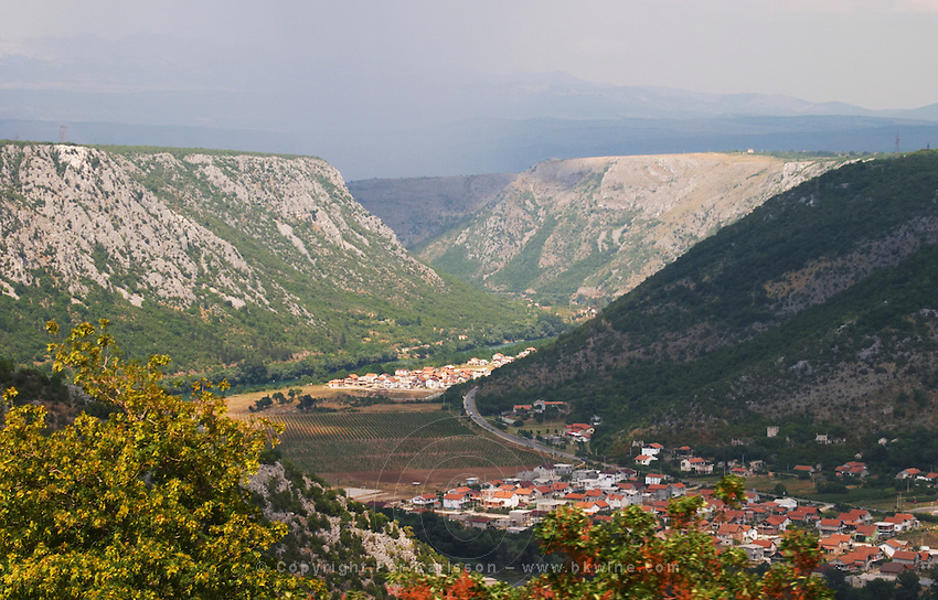 A view over the vineyards planted on the plain along the river Neretva, in the Mostar Citluk region near the village Zitomislici, with dramatic mountains framing the valley. Zitomislici at bottom. Federation Bosne i Hercegovine. Bosnia Herzegovina, Europe.