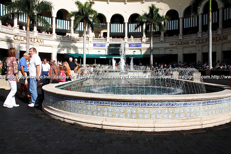 Scenes from Donn Handicap Day at Gulfstream Park. Hallandale Beach Florida. 02-09-2013
