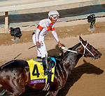 November 2, 2019 : Mitole, ridden by Ricardo Santana Jr., wins the Breeders' Cup Sprint on Breeders' Cup Championship Saturday at Santa Anita Park in Arcadia, California on November 2, 2019. John Voorhees/Eclipse Sportswire/Breeders' Cup/CSM