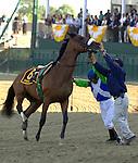 Barbaro and Jockey Edgar Prado