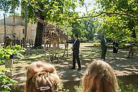 """Bundesentwicklungsminister Dr. Gerd Mueller und Dr. Eckart von Hirschhausen besuchten zum """"Internationale Tag zum Erhalt der Artenvielfalt"""" (22. Mai) den Berliner Zoo.<br /> Sie warnten vor vor der Abnahme der biologischen Vielfalt und erklaerten, dass """"alle vier Sekunden wird Wald von der Flaeche eines Fussballfeldes abgeholzt wird. Die Gefahr, dass Viren vom Tier auf den Menschen ueberspringen steigt, je mehr die natuerlichen Lebensraeume schrumpfen. Die Zerstoerung der Natur und Artenvielfalt bedroht so auch den Menschen. Corona ist dafuer das juengste Beispiel"""".<br /> Im Bild: <br /> 20.5.2020, Berlin<br /> Copyright: Christian-Ditsch.de<br /> [NUR FUER REDAKTIONELLE ZWECKE! Werbung nur auf Anfrage beim Fotografen. Inhaltsveraendernde Manipulation des Fotos nur nach ausdruecklicher Genehmigung des Fotografen. Vereinbarungen ueber Abtretung von Persoenlichkeitsrechten/Model Release der abgebildeten Person/Personen liegen nicht vor. NO MODEL RELEASE! Don't publish without copyright Christian-Ditsch.de, Veroeffentlichung nur mit Fotografennennung, sowie gegen Honorar, MwSt. und Beleg. Konto: I N G - D i B a, IBAN DE58500105175400192269, BIC INGDDEFFXXX, Kontakt: post@christian-ditsch.de<br /> Bei der Bearbeitung der Dateiinformationen darf die Urheberkennzeichnung in den EXIF- und  IPTC-Daten nicht entfernt werden, diese sind in digitalen Medien nach §95c UrhG rechtlich geschuetzt. Der Urhebervermerk wird gemaess §13 UrhG verlangt.]"""