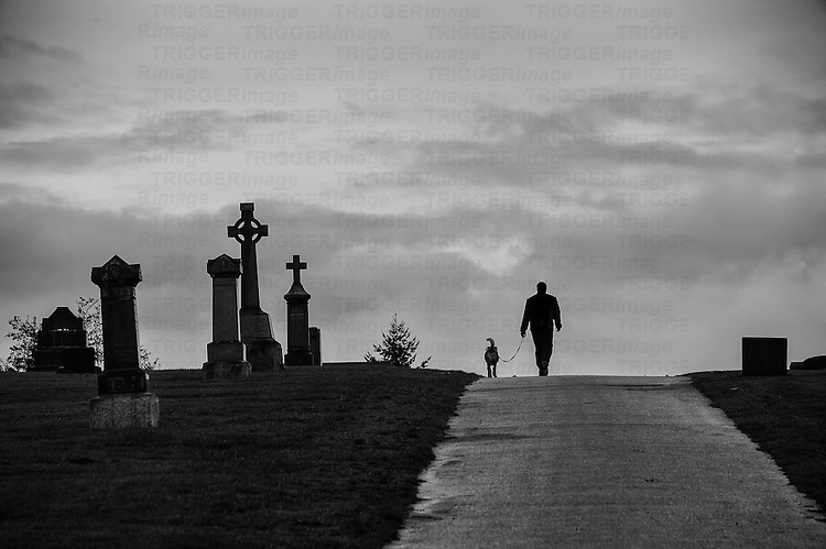 Silhouetted man and dog walking uphill through a cemetery.