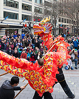 Chinese New Year, Seattle, WA, USA.