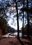 Pond and pine trees near Chesapeake Bay largest estuary in the United States surrounded by Maryland and Virginia, Fine Art Photography by Ron Bennett, Fine Art, Fine Art photography, Art Photography, Copyright RonBennettPhotography.com ©