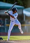 29 August 2019: Vermont Lake Monsters outfielder Kevin Richards at bat in the first inning against the Connecticut Tigers at Centennial Field in Burlington, Vermont. The Lake Monsters fell to the Tigers 6-2 in the first game of their NY Penn League double-header.  Mandatory Credit: Ed Wolfstein Photo *** RAW (NEF) Image File Available ***