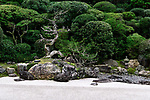 Magnificient dry juniper tree on a Turtle island of Crane and Turtle Japanese Zen rock garden of Konchi-in historic temple at Nanzen-ji complex in Sakyo-ku, Kyoto, Japan 2017 Image © MaximImages, License at https://www.maximimages.com